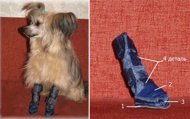 Делаем обувь для собаки своими руками ...